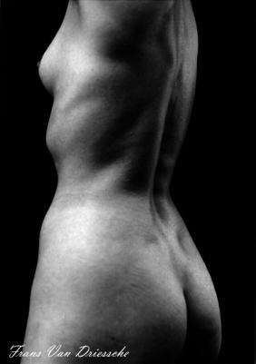 naakt, rug, torso